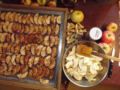 Start dehydrating your own foods with an Excalibur dehydrator!