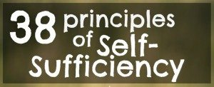 38 Principles of Self-Sufficiency