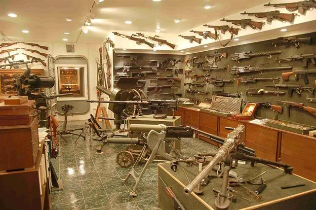 The average gun collection of the typical prepper!