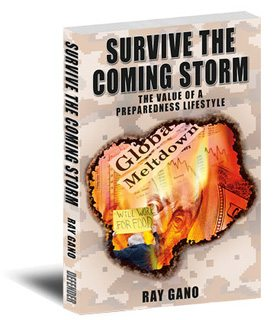 Survive the Coming Storm, a book review