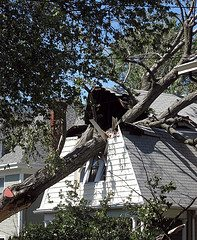 storm damage Lessons Learned from 9 Days Without Power
