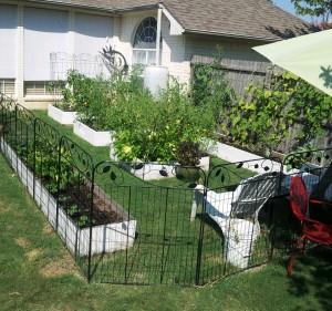 Garden62712(1)
