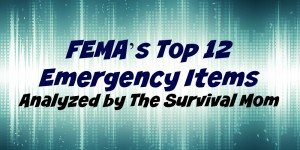 FEMA's Top 12 Emergency Items Analyzed by The Survival Mom