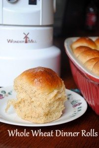 Just in time for the holidays: Homemade 100% Whole Wheat Dinner Rolls
