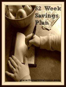 52 Week Savings Plan: Bonus March prepping bargains to keep your savings on track