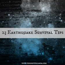 23 earthquake survival tips 225x225