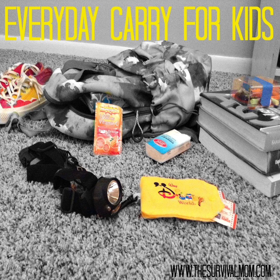 PicMonkey Everyday Carry for Kids