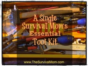 A Single Survival Mom's Essential Tool Kit