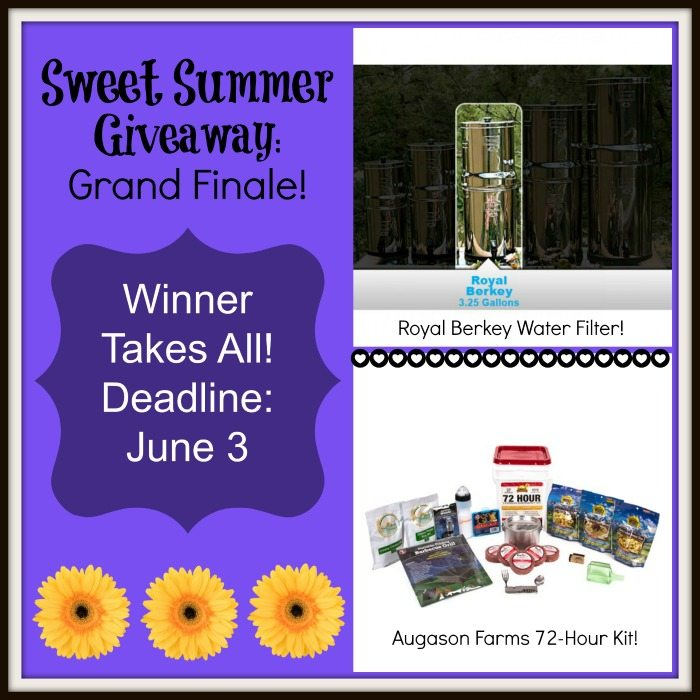 Sweet Summer Giveaway: Day 5 — Royal Berkey and 72 Hour Emergency Kit