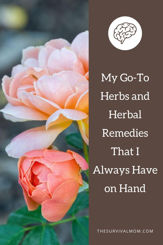image: pink and orange roses, roses for herbal remedies