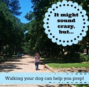Walking your dog can help you prep