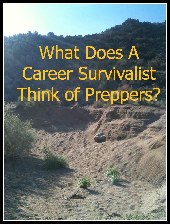 Career survivalist definition