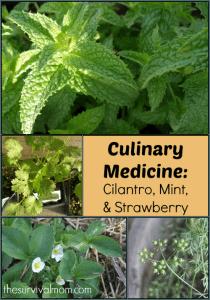 Culinary Medicine: Cilantro, Mint, & Strawberry