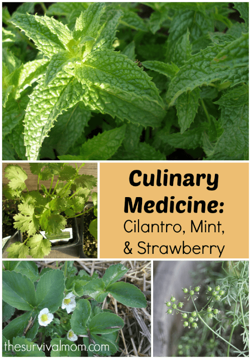 Culinary Medicine: Cilantro, Mint, & Strawberry - The Survival Mom