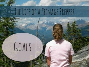 The Life of a Teenage Prepper: Goals