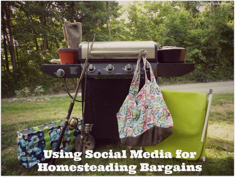 Using Social Media for Homesteading Bargains
