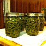canning green beans featured
