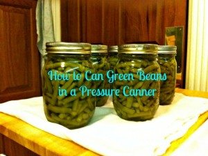 How to Can Green Beans in a Pressure Canner