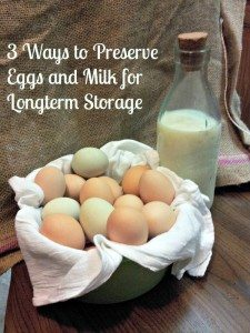 3 Ways to Preserve Eggs and Milk for Long-term Storage