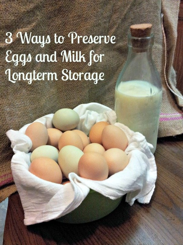Do you know how to preserve eggs and milk for the long term - without storing them in your refrigerator or freezer? - The Survival Mom