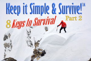 Keep it Simple and Survive!™: 8 Keys to Survival, Part 2