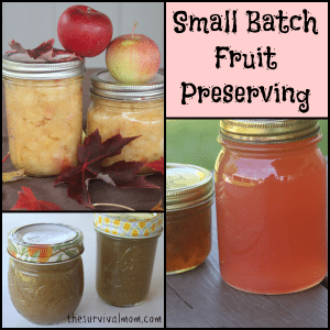 Small Batch Fruit Preserving