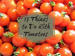 17 Things to Do with Tomatoes