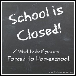 What if You're Forced to Homeschool?