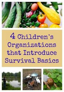 Children's Organization the Introduce Survival Basics