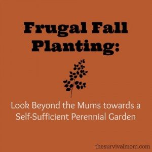Frugal Fall Planting