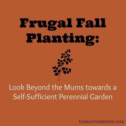 Frugal Fall Planting - The Survival Mom