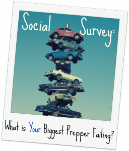 Social Survey: What is Your Biggest Prepper Failing? (From the Library of Congress Highsmith Archives)