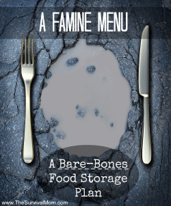 A Famine Menu — A Bare-Bones Food Storage Plan