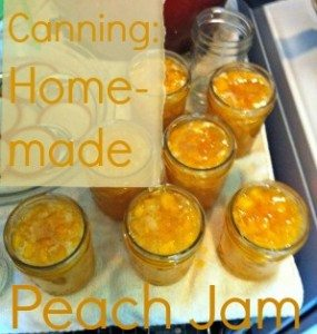 Canning Home Preserved Peach Jam
