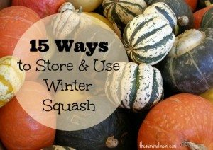 15 Ways to Store & Use Winter Squash - The Survival Mom