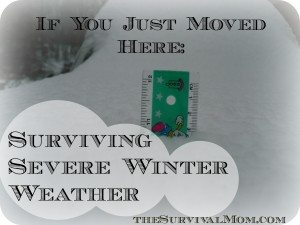 If You Just Moved Here: Surviving Severe Winter Weather