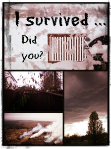 I survived photo2