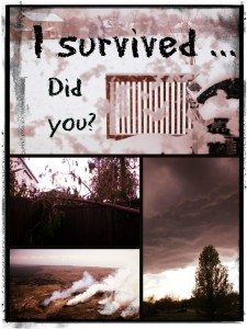 I Survived … Did you?