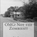 OMG!_Not_the_Zombies_Cover_for_Kindle