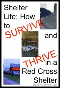 Shelter Life: How to Thrive and Survive in a Red Cross Shelter