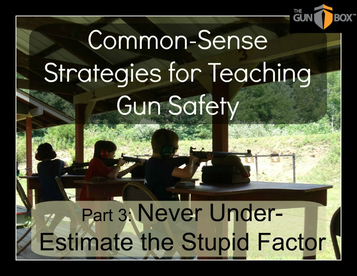 Common Sense Strategies for Teaching Gun Safety: Never Underestimate the Stupid Factor