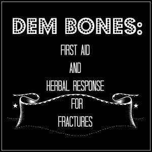 Dem Bones: First Aid and Herbal Response for Fractures