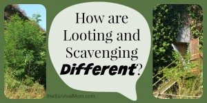 How are Looting and Scavenging Different?