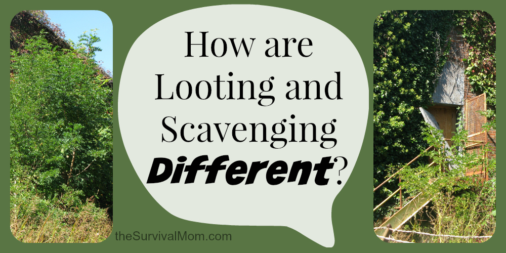 looting vs scavenging