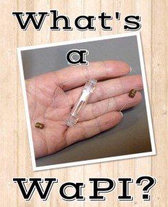 What's a WaPI?
