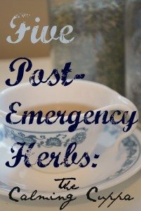 5 Post-Emergency Herbs: The Calming Cuppa