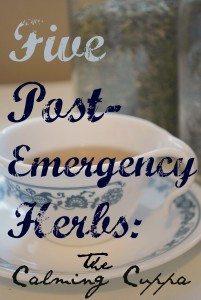 5 Post-Emergency Herbs: The Calming Cuppa