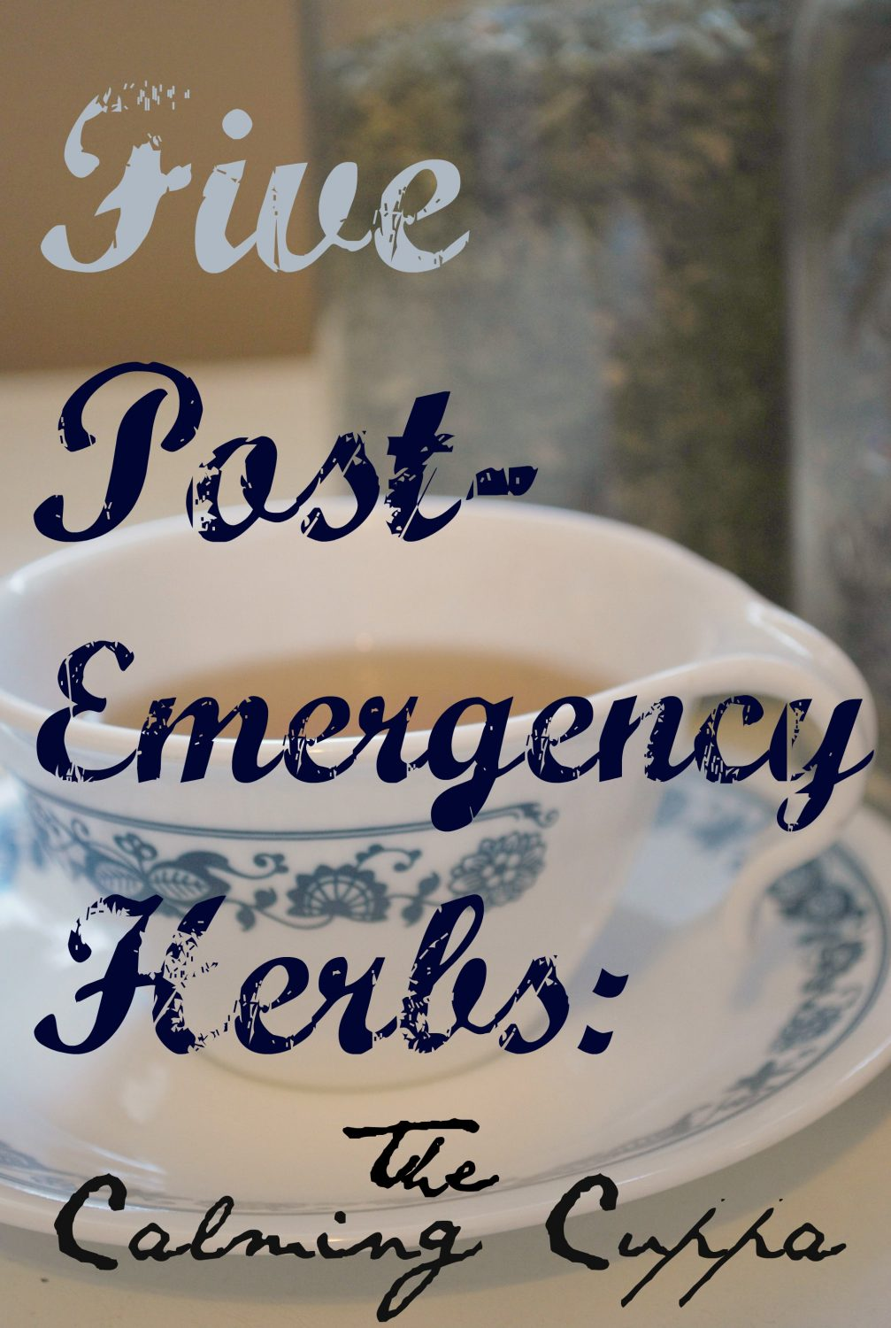 In an emergency, adrenaline fuels us but doesn't just disappear when it ends. In an emergency these 5 herbs can help calm the jitters. | www.TheSurvivalMom.com