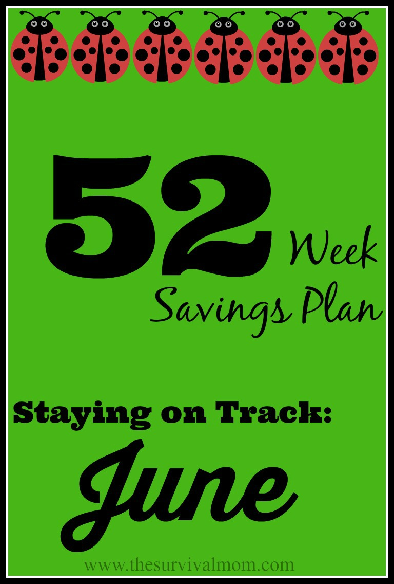 52 weeks savings challenge