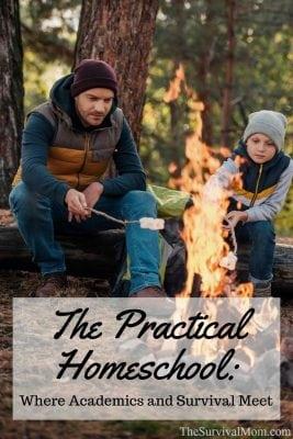 The Practical Homeschool: Where Academics & Survival Meet